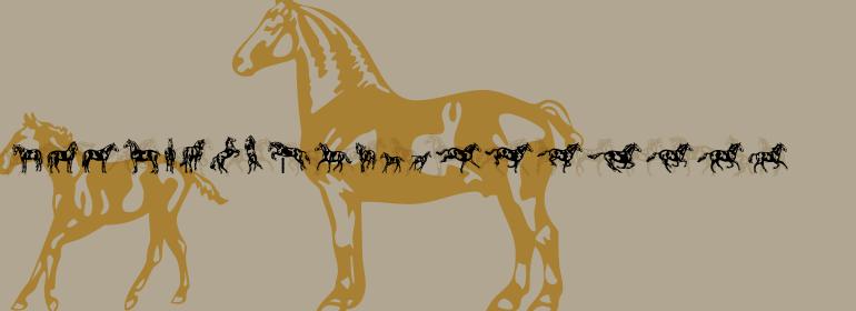 Linotype Dressage™