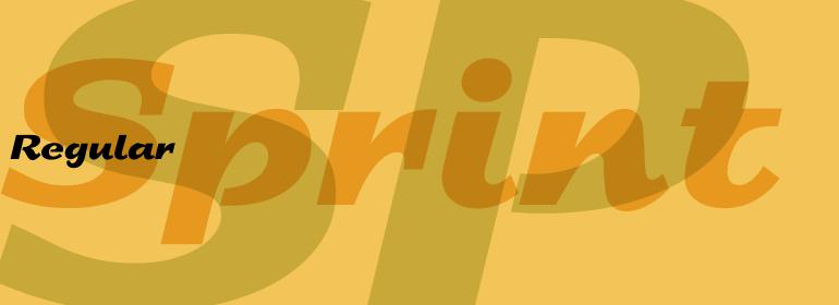 Sprint™
